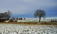 DSC02530 - K  Winterlandschaft in Schonebeck